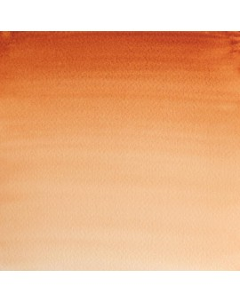 W&N Professional Water Colour - Burnt Sienna (074)