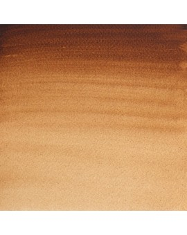Burnt Umber - W&N Professional Water Colour