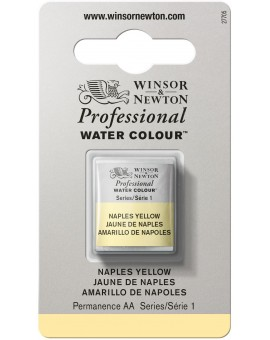 W&N Professional Water Colour - Naples Yellow (422)