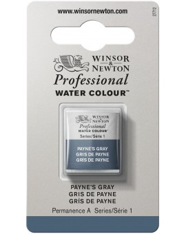 W&N Professional Water Colour - Payne's Grey (465)