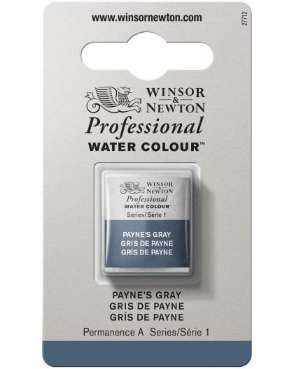 W&N Professional Water Colour - Payne's Grey 1/2 napje
