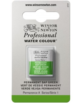 W&N Professional Water Colour - Permanent Sap Green (503)