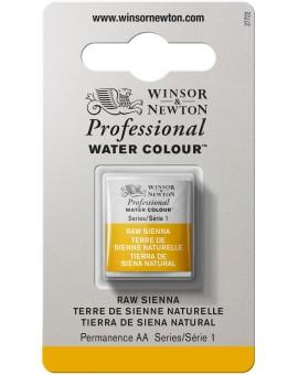 W&N Professional Water Colour - Raw Sienna (552)