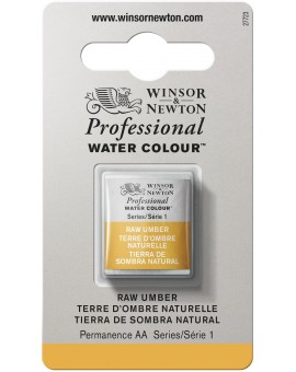 W&N Professional Water Colour - Raw Umber (554)
