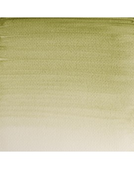 Terre Verte (Yellow Shade) - W&N Professional Water Colour