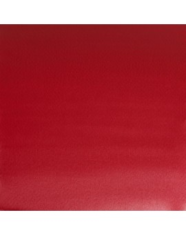 W&N Professional Water Colour - Winsor Red Deep (725)