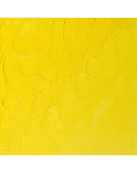 W&N Winton Oil Colour - Lemon Yellow Hue (346)