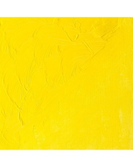 W&N Winton Oil Colour - Cadmium Lemon Hue (087)