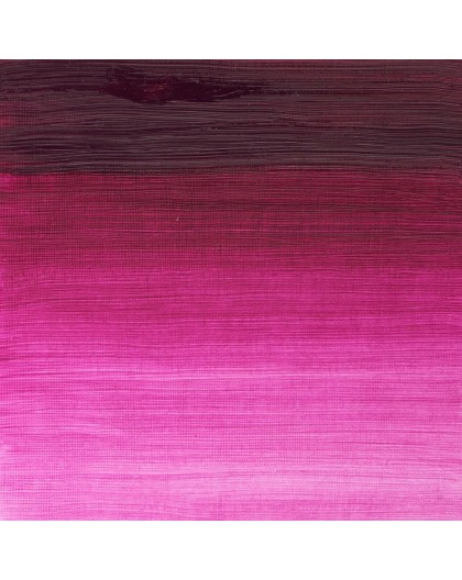 W&N Winton Oil Colour - Magenta (380)