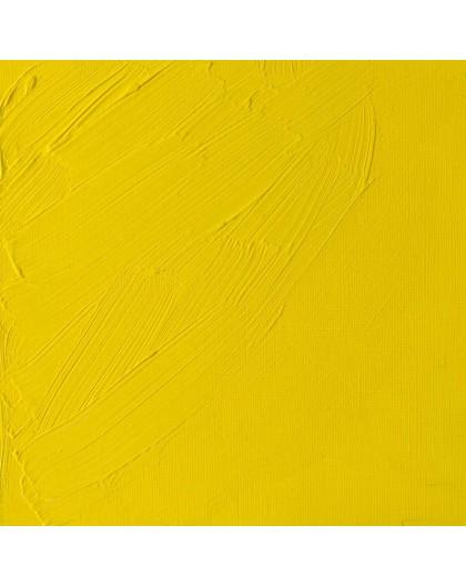 W&N Artists' Oil Colour - Cadmium Lemon (086)