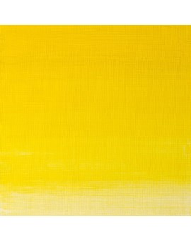 W&N Artists' Oil Colour - Winsor Yellow (730)