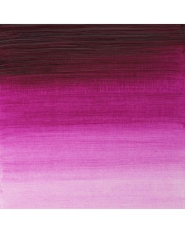 W&N Artists' Oil Colour - Magenta (380)
