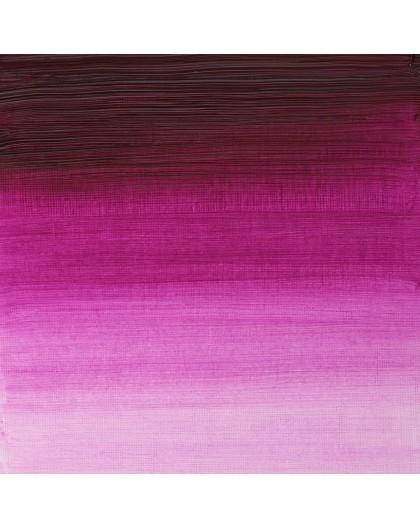 W&N Artists' Oil Colour - Magenta (380)