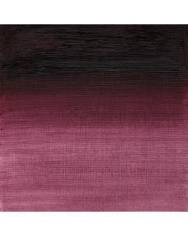 W&N Artists' Oil Colour - Purple Lake (544)