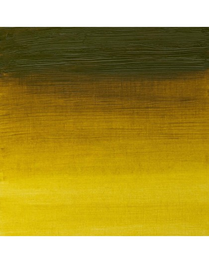 W&N Artists' Oil Colour - Green Gold (294)