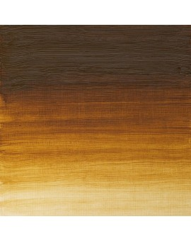Raw Umber Light - W&N Artists' Oil Colour