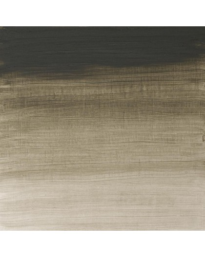 W&N Artists' Oil Colour - Davy's Gray (217)