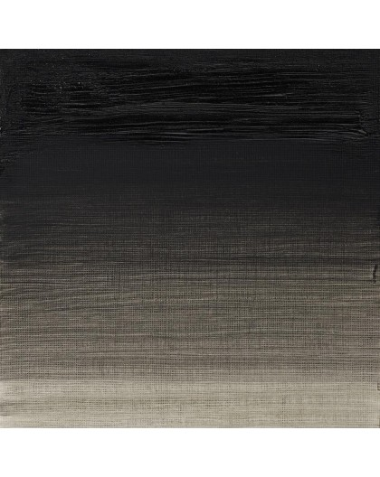 W&N Artists' Oil Colour - Charcoal Grey (142)