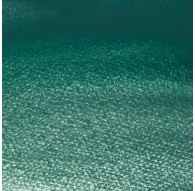 Cobalt Green Deep - W&N Professional Water Colour