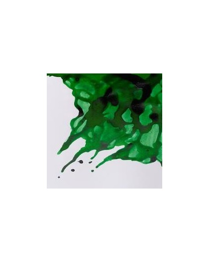 W&N Drawing ink 14ml - Brilliant Green